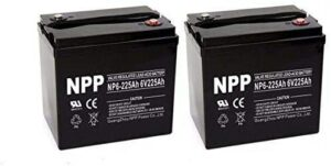 NPP NP6-225Ah 6V AGM Deep Cycle Battery